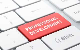 professional dev icon2